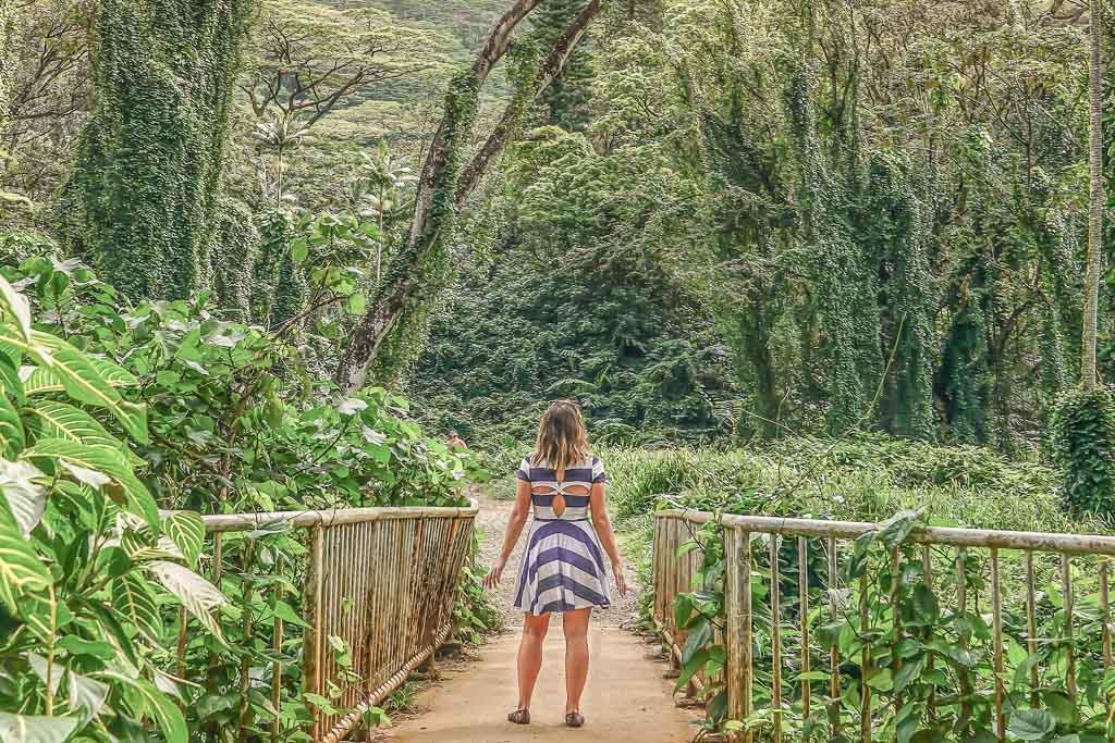Manoa Falls, Oahu, Hawaii