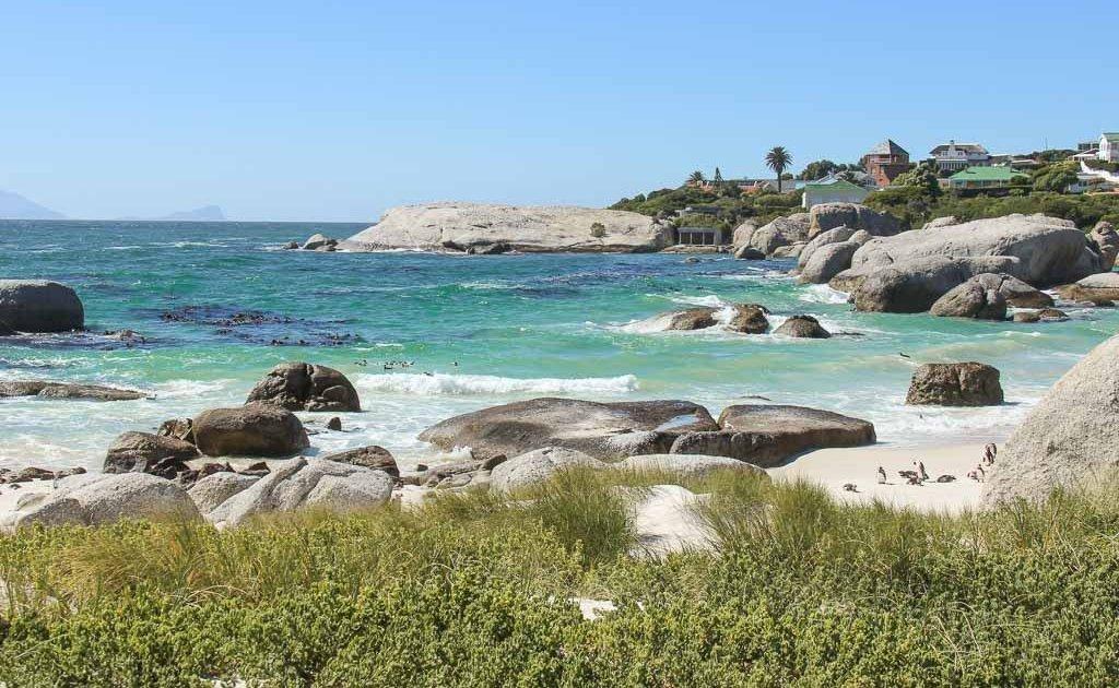 3 days in Cape Town. Boulders beach.