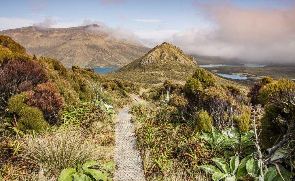 Beeman Hill, Perseverance Harbor, Northwest Bay, Campbell Island, New Zealand, Subantarctic, Subantarctic Islands