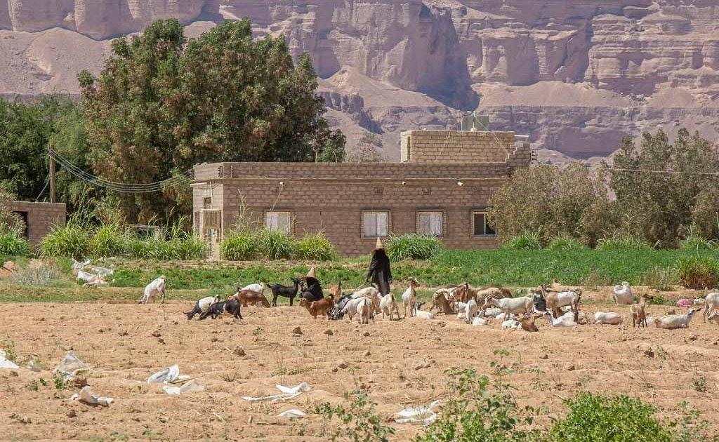 Wadi Doan, Wadi Hadhramaut, Hadhramaut, Yemen,Wadi Daw'an, madhalla, woman in madhalla, Yemeni witch hat