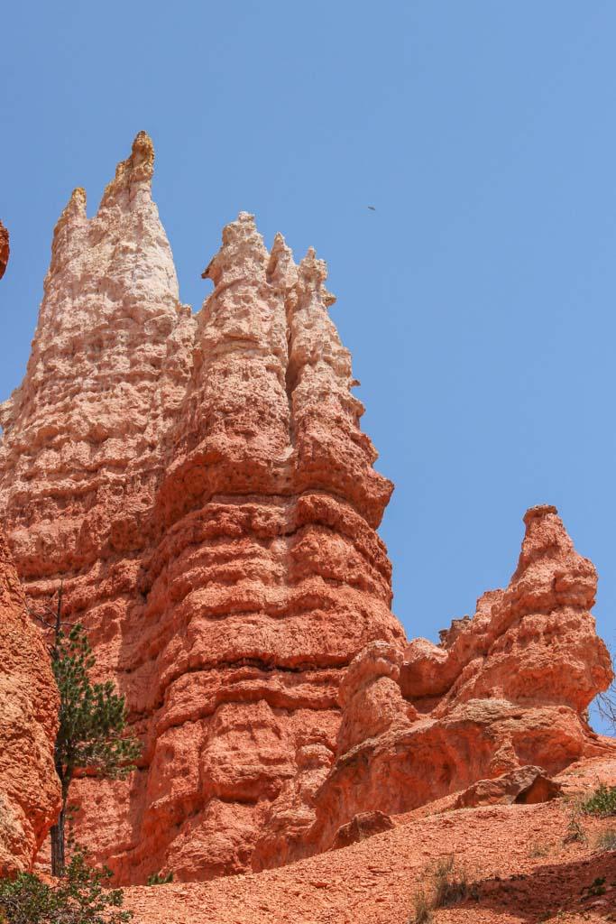 Queens Garden, Queens Garden, Queens Garden Bryce, Bryce Canyon, Bryce Canyon National Park, Utah, hoodoo, hoodoos