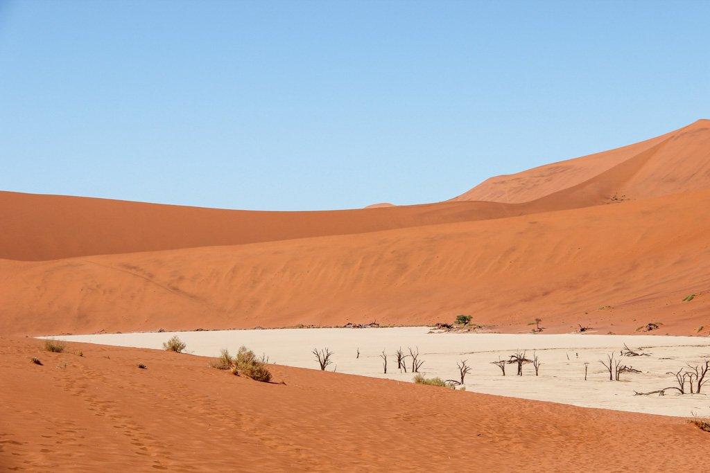 Hidden Vlei, Sossusvlei, Namib-Naukluft National Park, Namibia